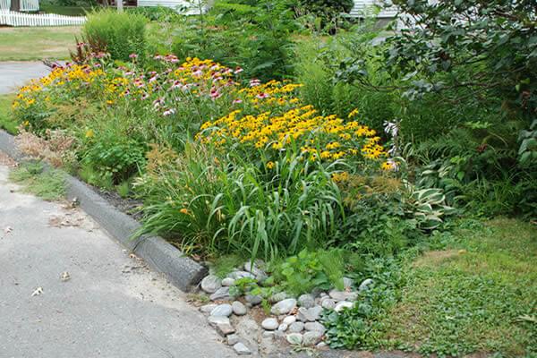 Build A Rain Garden Neponset River Watershed Associationneponset