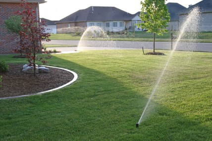 An example of what to avoid: 1) Short grass and 2) Watering too often.