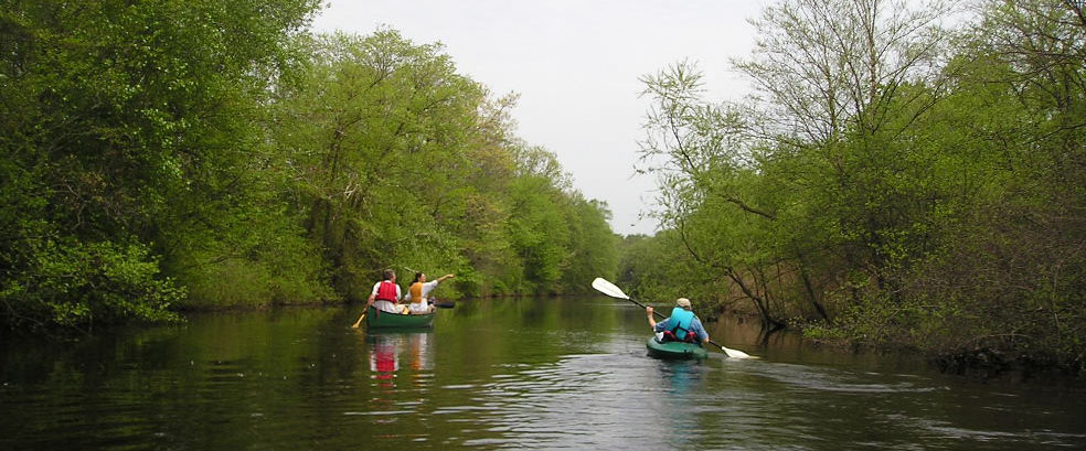 Peaceful paddle through a section of the Lower Neponset River, 2004.