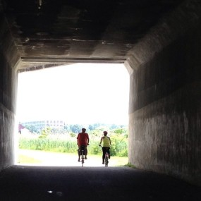 Cyclists pass beneath the trolley line on the Neponset Greenway, June 23, 2013.