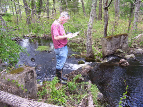 An example of one of the many small dams that are scattered about streams in the Neponset River Watershed.
