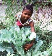 cute girl urban garden