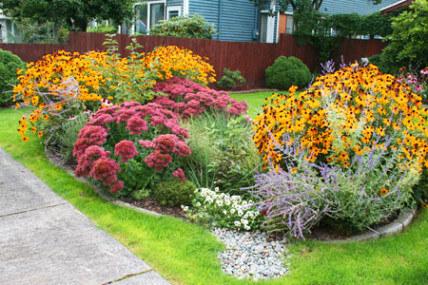 rain garden from web 2
