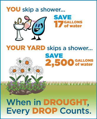 when-in-drought-infographic