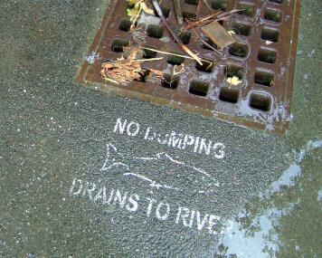 no dumping stormdrain