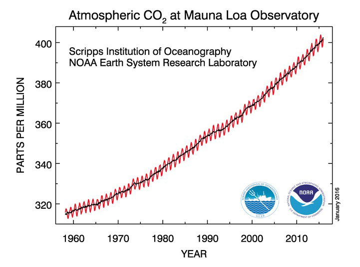 NOAA CO2 GRAPH
