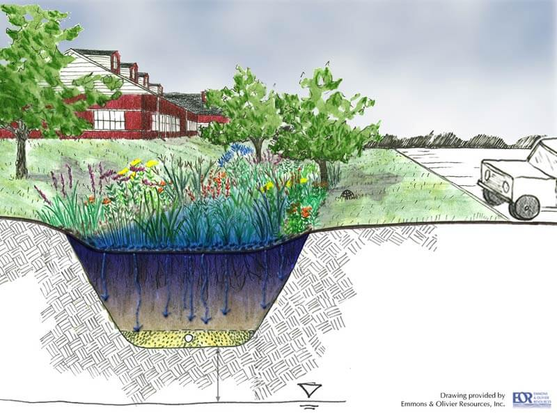 Build A Rain Garden Neponset River Watershed
