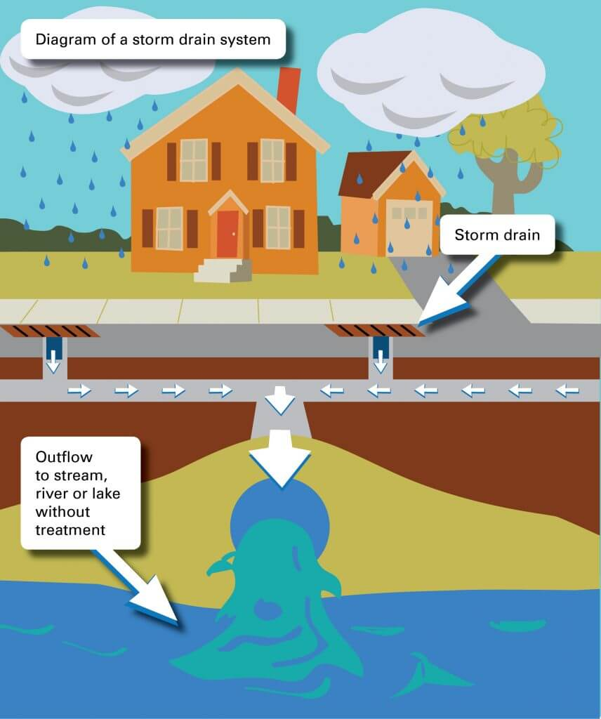 Stormwater | Neponset River Watershed Association